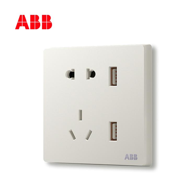 开关插座轩致雅典白二位带USB充电中标二三极插座10A AF293;10183457